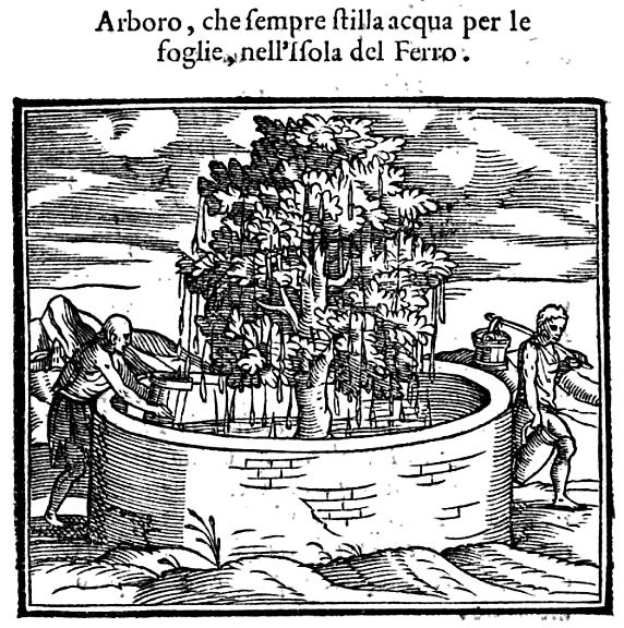 La Historia del Mondo Nuouo   Girolamo Benzoni   Google Books
